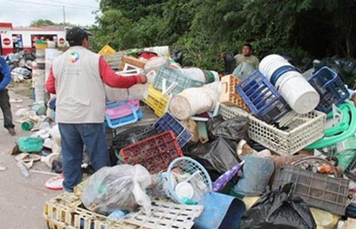 Descacharramiento Ayudará a Prevenir Incremento en Casos de Dengue, Zika y Chikungunya en la Región