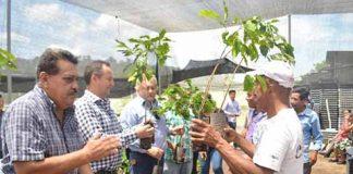 Más de 16 Mil Cafeticultores Obtienen Recursos del Ciclo 2018: SAGARPA