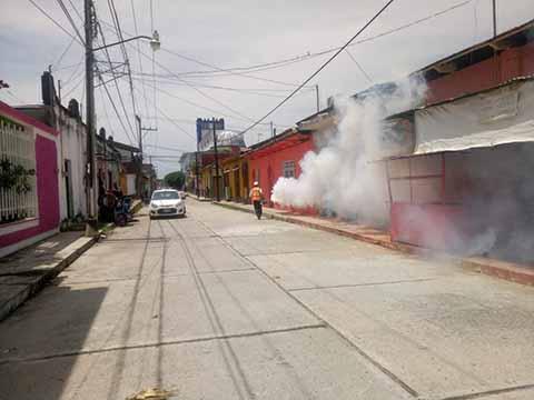 Contrarrestan Dengue y Chikungunya