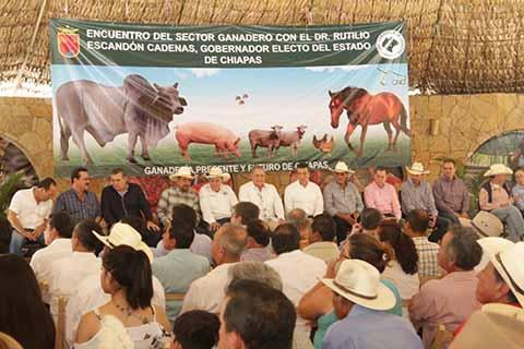 Sostiene Rutilio Escandón Encuentro con el Sector Ganadero de Chiapas