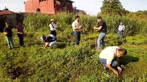 UNACH Realiza Reforestación en Tapachula