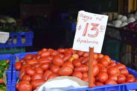Sin Aumentar los Precios de Verduras Tras Afectaciones por Canícula