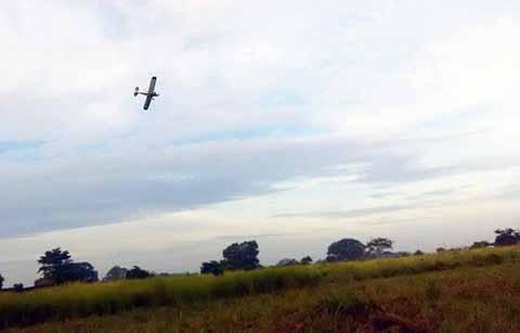 Fumigaciones Aéreas son Requisito en Ingenio de Huixtla