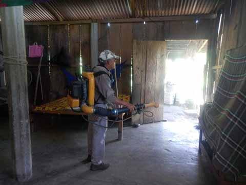 Fumigan Viviendas Inundadas en Huixtla