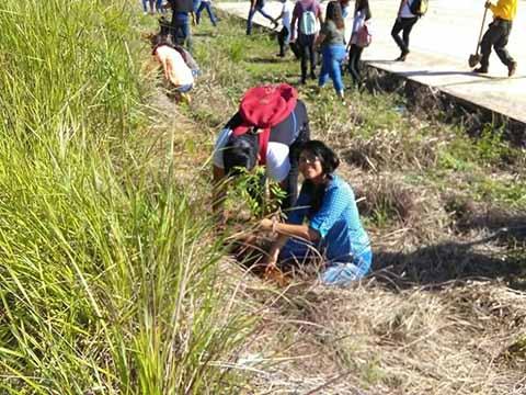 Conafor Reforesta Áreas Siniestradas por Incendios en el Soconusco