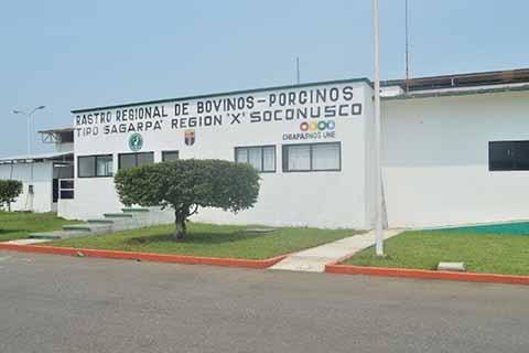Certificado TIF del Rastro Tapachula Depende del Congreso del Estado