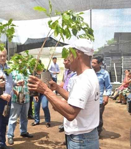 Defraudan a Campesinos en Programas Sociales