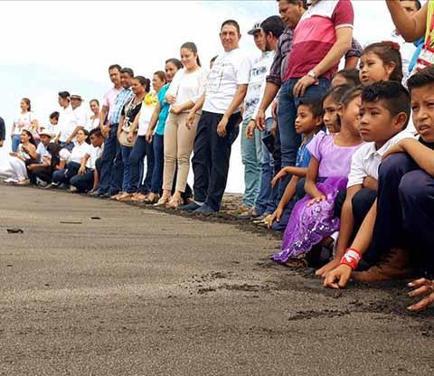 Fomenta Protección de Tortugas en Mazatán