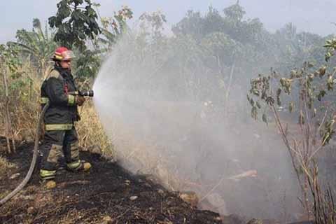 Bomberos en Alerta Ante Incremento de Incendios
