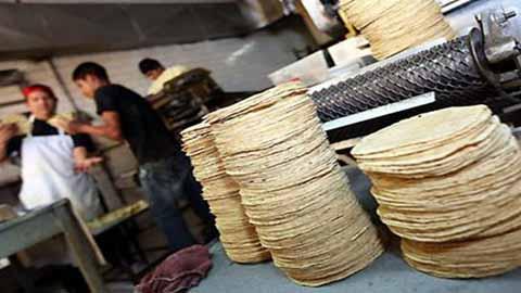 Aumentará Precio de la Tortilla a Partir del Lunes ¿Y PROFECO?