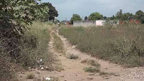Terrenos Baldíos y Casas Abandonadas en Colonia Los Llanes Generan Inseguridad