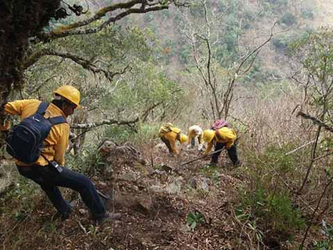 Caza Furtiva, Principal Causa de Incendios Forestales en la Reserva de la Encrucijada
