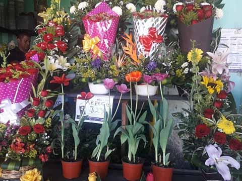 Florerías sin Expectativas de Ventas en San Valentín por Crisis Económica