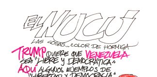 LIBERTAD Y DEMOCRACIA AL ESTILO GRINGO