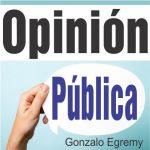 OPINION POLITICA