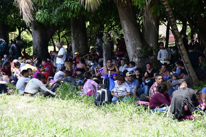 Advierte Derechos Humanos que se Dirigen Miles de Maras Infiltrados en Caravanas Hacia Tapachula