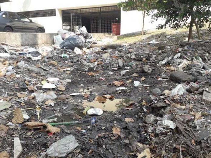 Un Cochinero la Unidad Administrativa Reportan Constante Fuga de Aguas Negras