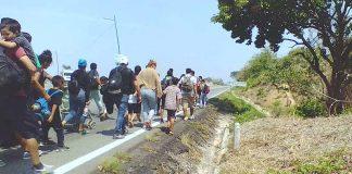 Detienen a 400 Migrantes en Pijijiapan