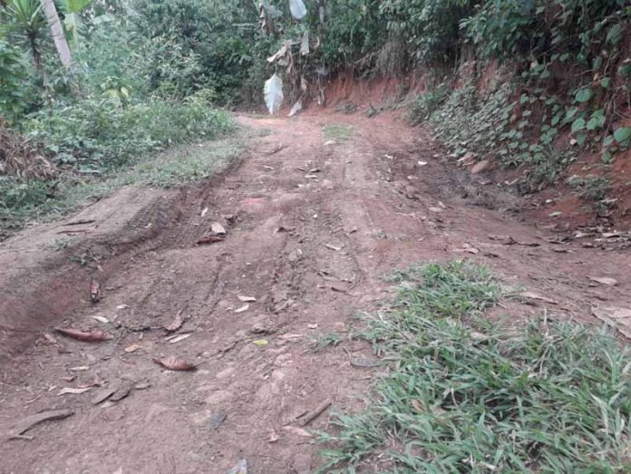 Urgen Rehabilitar Caminos Saca Cosechas en Zona Alta de Tapachula